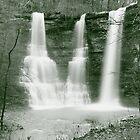 Twin Falls in Mono by David  Hughes