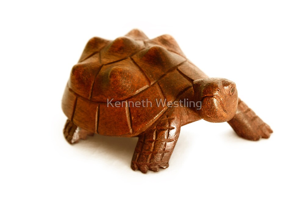 Wooden Turtle  by Kenneth Westling