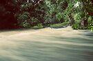 The Flowing Stream... by Carol Knudsen