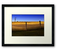 Dayboro - Fence and tree. Framed Print