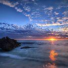Daydream in Blue by Jill Fisher