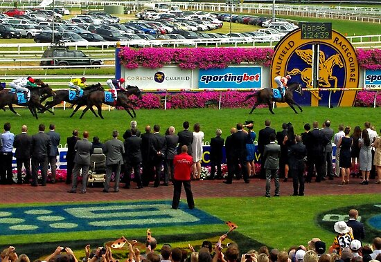 Black Caviar Wins (again) by hurky