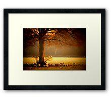 """""""WINTER SHADE"""" Framed Print"""