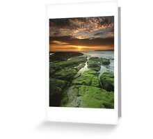 """""""Symphony of the Sun"""" ∞ Shellharbour, NSW - Australia Greeting Card"""