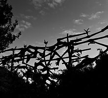 Yad Vashem Holocaust memorial by Tony Roddam