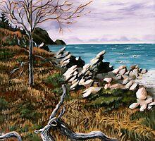 Rugged Coastline by Dan Wilcox