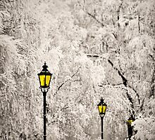 Winter Lanterns by Ari Salmela