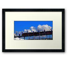 Monarail Framed Print