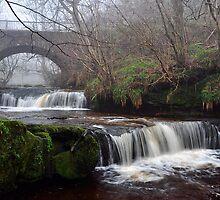 Garell Glen Waterfall,Kilsyth,Scotland by Jim Wilson