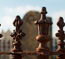 Gravestone railings, Bannow Church, County Wexford, Ireland by Andrew Jones