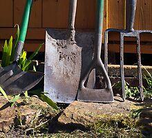 Photography 1st Gardening 2nd by Paul Barnett
