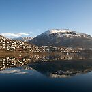 Sunny Bergen - Store Lungegårdsvann and Mt. Ulriken by Algot Kristoffer Peterson