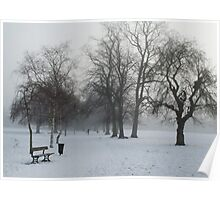 Trees In the Snow  Poster