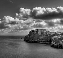 St Catherines Rock Tenby Pembrokeshire by Steve Purnell