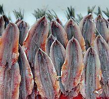 Neatly filleted sardines, Amalfi, Campania, Italy by Andrew Jones