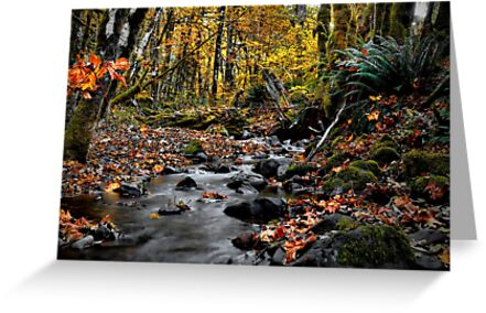 A Hidden Place by Charles & Patricia   Harkins ~ Picture Oregon