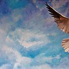 Absolute Freedom by Stephanie Köhl