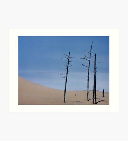 TREES AND DUNE Art Print