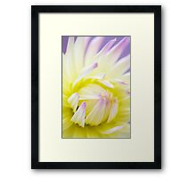 Dreamy Dahlia Flower Wall Art Framed Print