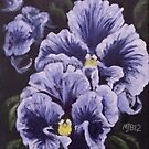Fancy Pansies by Michael Beckett