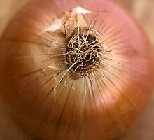 Onion Wall Art by Natalie Kinnear
