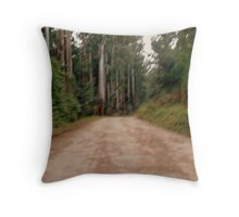 Misty view of road leading through a Park Throw Pillow