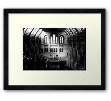 London - Natural History Museum - Main Hall Framed Print