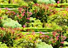 Victorian Garden by NatureGreeting Cards ©ccwri