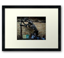 Natural History Museum - Megatherium Framed Print