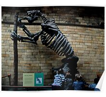 Natural History Museum - Megatherium Poster