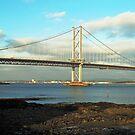 Forth Road Bridge by Tom Gomez