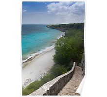 1,000 steps in Bonaire Poster