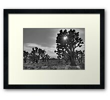 Stay Thirsty My Friends Framed Print