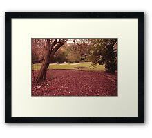 One Fall Afternoon Framed Print