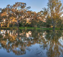 In A Reflective Mood - Albury , NSW - The HDR Experience by Philip Johnson