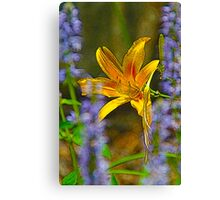 Flower Framed Lily Canvas Print