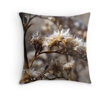 Don't pass me by Throw Pillow