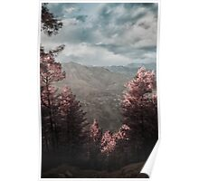 Infrared Valley Poster