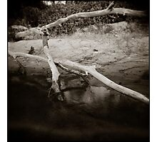 { placid lake } Photographic Print