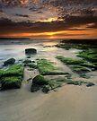 """Alone"" ∞ Shellharbour, NSW - Australia by Jason Asher"