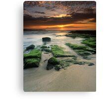 """Alone"" ∞ Shellharbour, NSW - Australia Canvas Print"