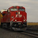 CP 8954..I'm going off the rails on a crazy train by jammingene