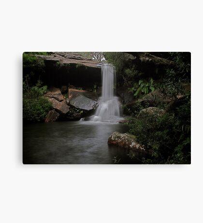 McCarrs Creek Falls Ku-ring-Gai National Park Canvas Print