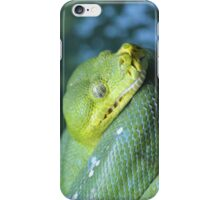 Green Tree Python (iPhone/iPod Case) iPhone Case/Skin