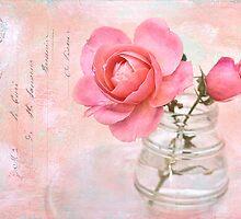 Rose Palette by Leslie Nicole
