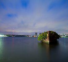 Homebush Bay Shipwreck by Llewellyn Cass