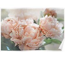 Peach Peonies Poster