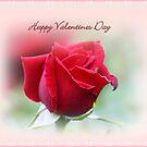 Happy Valentines Day For Tokiko!! by rasnidreamer