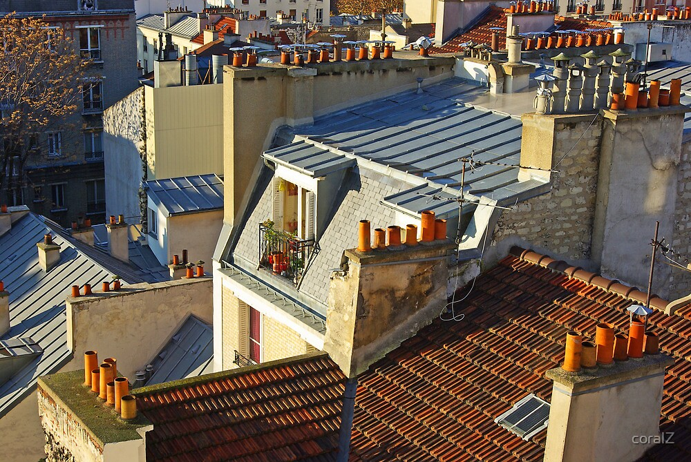 roofs of Paris by coralZ