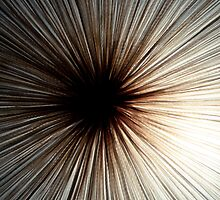 Light Shroom by Hasan Ibrahim